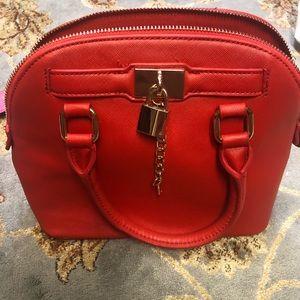 Cute ALDO Bag